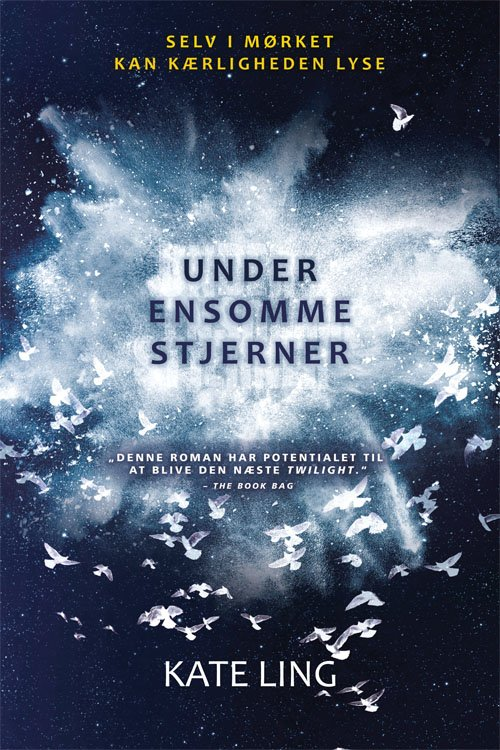Under ensomme stjerner